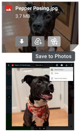 Fotos aus GMail direkt in Google Photos gespeichert werden